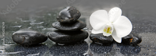White orchid and black stones close up.