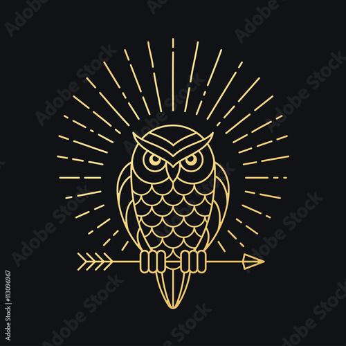 Canvas Prints Owls cartoon Owl with arrow emblem