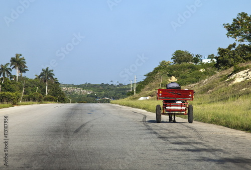 Man driving horse and cart on a wide deserted country road, Cuba, West Indies, Central America