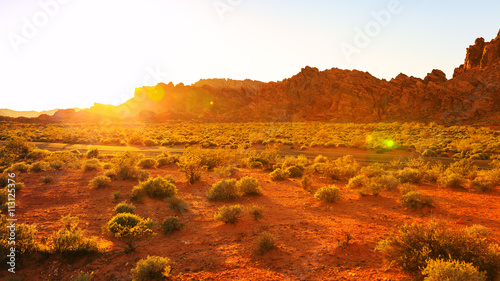Ingelijste posters Rood traf. Desert over sunset in Valley of Fire State Park, Southern Nevada, USA