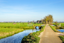 Colorful Dutch Polder Landscap...