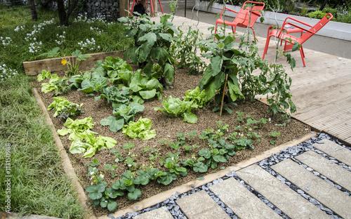 potager, urbain, aromatique, installation, jardin, écologie ...