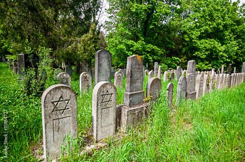 Photo sur Toile Cimetiere Old jewish cemetery in Vienna, Austria