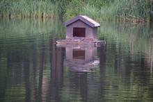 Dom Dla Ptaków Na Wodzie