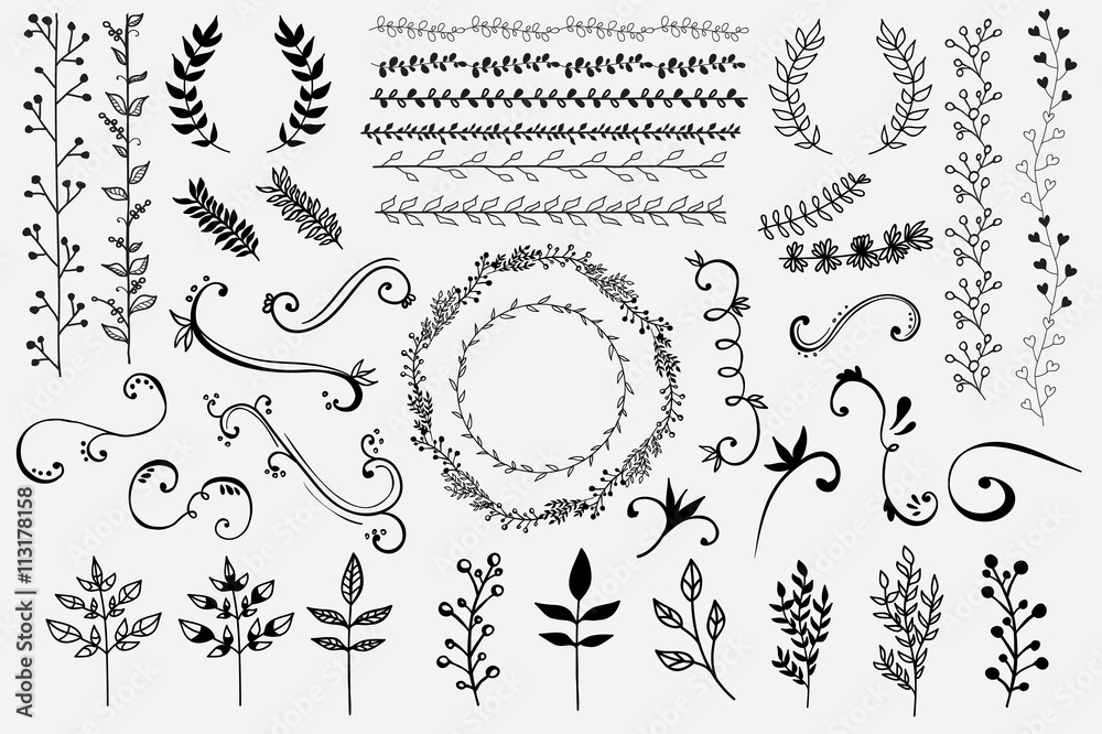 Fototapety, obrazy: Hand Drawn Floral Design Elements