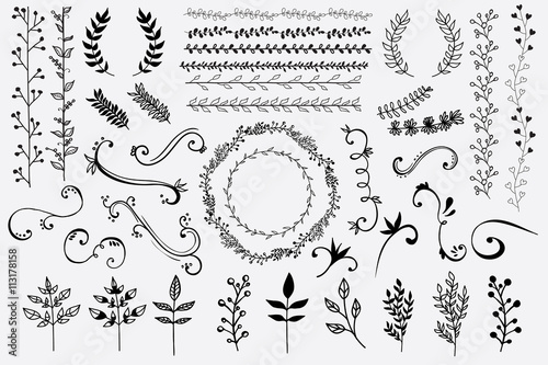 Photo  Hand Drawn Floral Design Elements