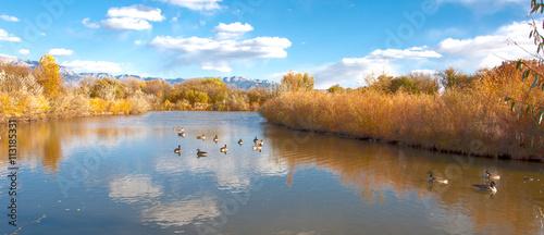 Photo Rio Grande Reflection