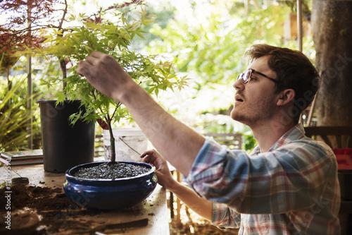 Man planting small tree