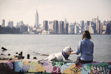 Woman Sitting With Dog On Multi Colored Retaining Wall By Sea