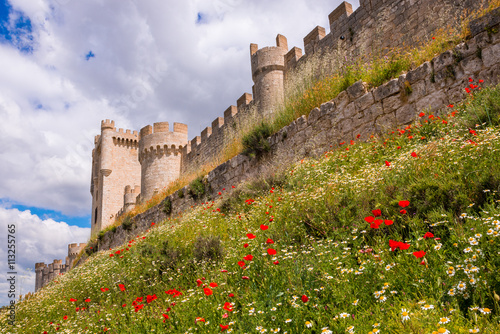 Foto op Plexiglas Kasteel Penafiel Castle, Valladolid Province, Castile-Leon (Spain)