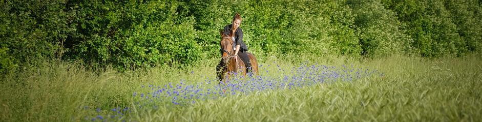 Romantisch - Pferd mit junger Reiterin, Banner