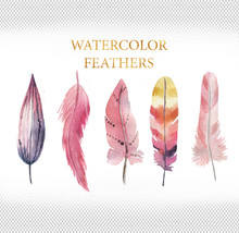 Set Of Pink Watercolor Feathers