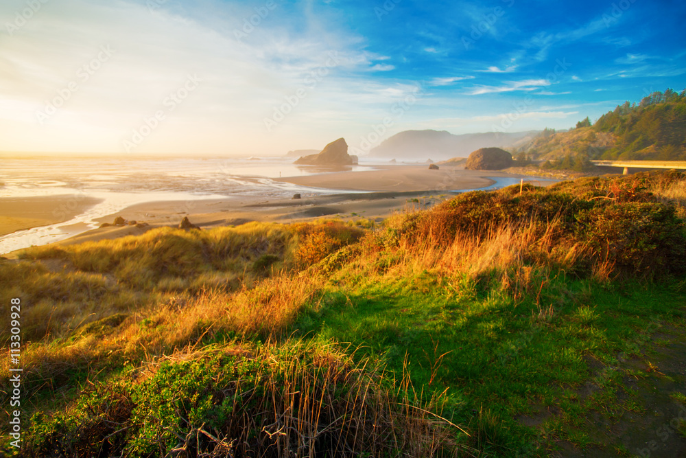 Fototapety, obrazy: Sunrise at Oregon coast