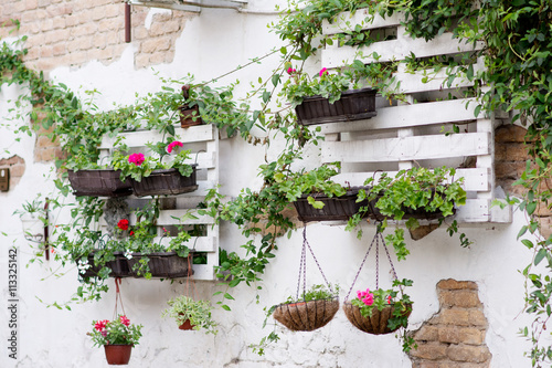 Fotografie, Obraz  Pallet ideas for gardening
