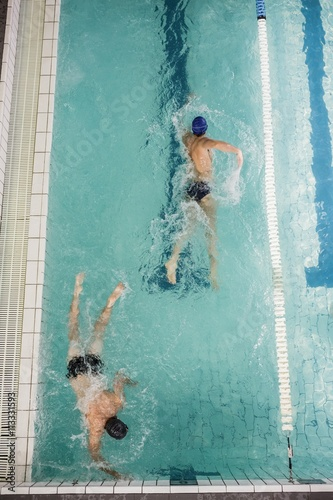 Swimmers doing the freestyle stroke in swimming pool Canvas Print