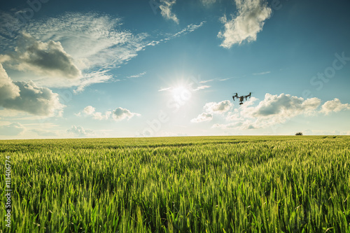 Tuinposter Platteland Flying drone above the wheat field