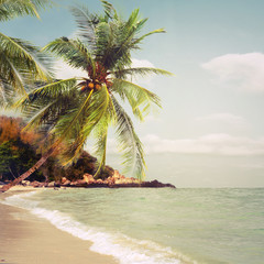 Fototapeta Morze Tropical beach in summer - nature background. Vintage and retro filter effect