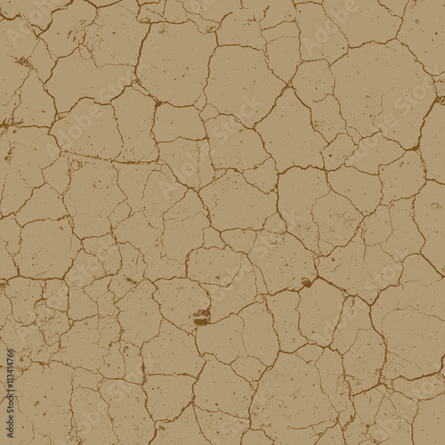Fotografía  Cracked Earth Texture