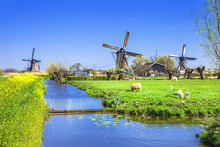 Traditional Holland Countryside