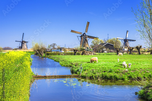 Fotografie, Obraz  traditional Holland countryside