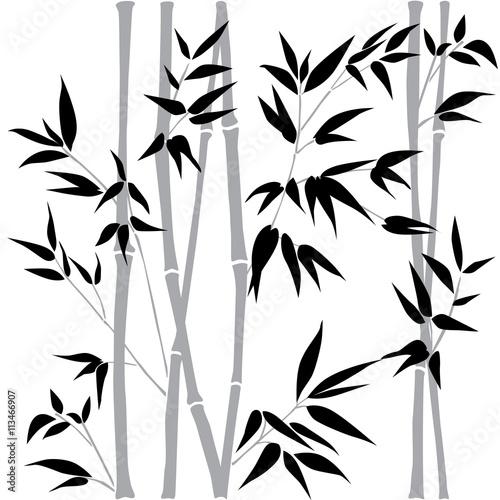 Tapety do sypialni dekoracyjne-galezie-bambusa-bambusowy-las