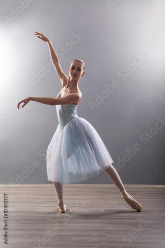Vászonkép  young ballerina in ballet pose classical dance