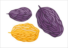 Raisin. A Vector Illustration Of Heap Of Raisins. A Part Of Dodo Collection - A Set Of Educational Cards For Children.