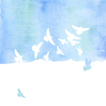 Pigeon In The Sky Watercolor Hand Drawn Illustration