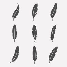 Feathers Vector Set
