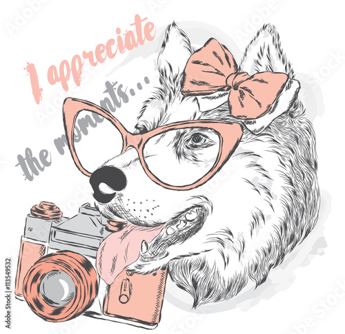 Dog with a camera. Vector illustration for a card or poster. Print on clothes.