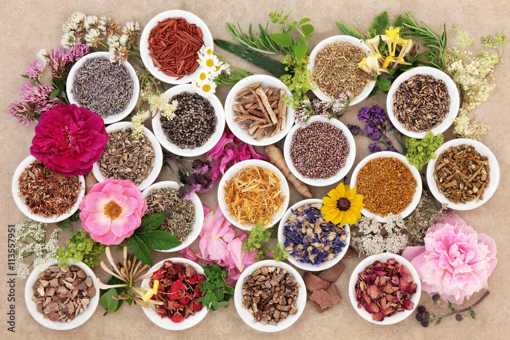 Fototapety, obrazy: Herbs and Flowers for Healing