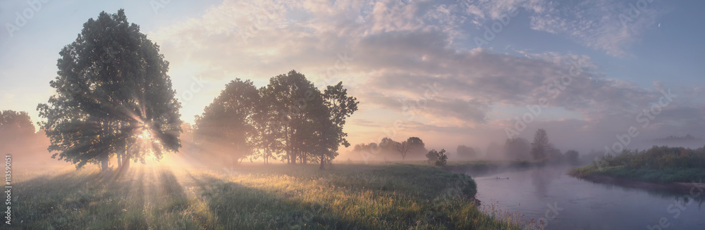 Fototapeta Beautiful summer morning landscape