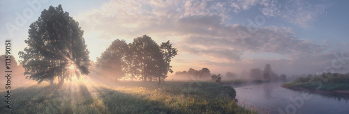 Poster Zalm Beautiful summer morning landscape