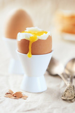 Soft-boiled Egg In The Stand With The Current Yolk Against Other Eggs For Breakfast