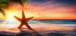 Starfish On Sand In Tropical Beach At Sunset