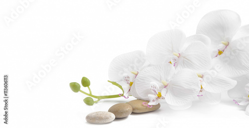 Foto op Plexiglas Orchidee Spa white orchid with massage stones