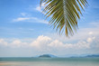 Inscape of coconut palm leaves on cloudscape background, happy summer holiday concept