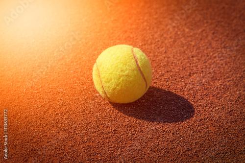 Fotografie, Obraz  tennis ball macro