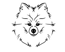 Dog Breed Line Art Logo - Pome...