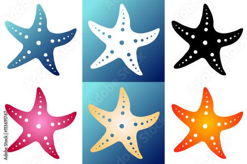 Set six silhouette starfish