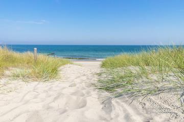 Fototapeta Zugang zur Ostsee
