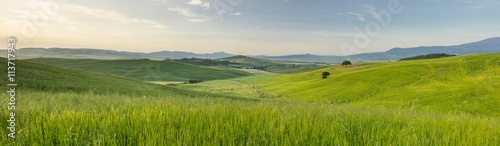 Foto op Canvas Bleke violet panorama of tuscany valley in Tuscany in Italy