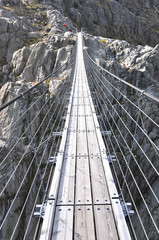 Panel SzklanyTrift Bridge, the longest 170m pedestrian-only suspension bridge in the Alps. Switzerland