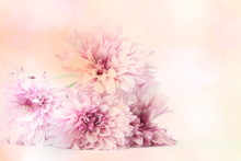A Bunch Of Pink Flowers Lying On A Textured Background.