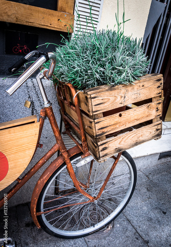fototapeta na drzwi i meble Rosemary in a wooden box on a bicycle, Mercado San Miguel, Madrid, Spain.