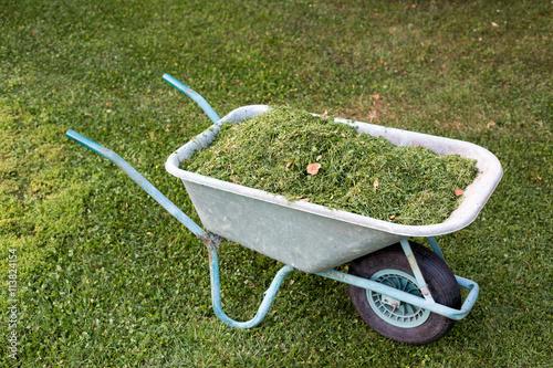 Fotografie, Obraz  Carriola piena di erba tagliata vista dall'alto