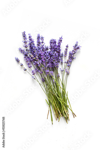Lavender flowers on white background Wallpaper Mural