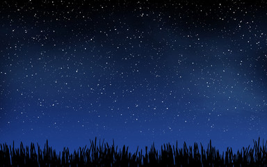 Deep night sky with many stars and grass