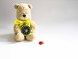 Bear with compass and heart shape