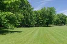 Park Green Land